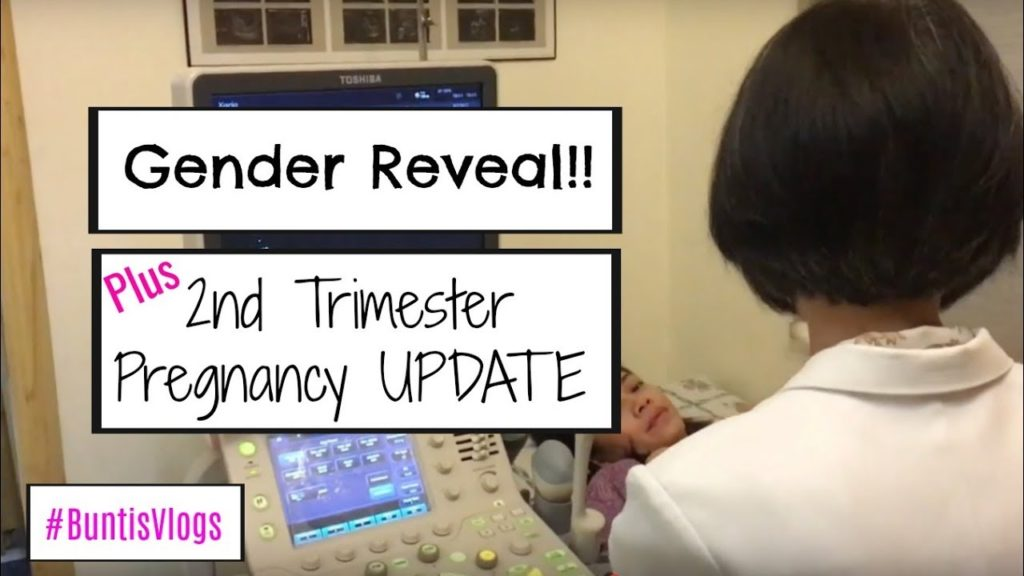 Gender Reveal and Second Trimester Update